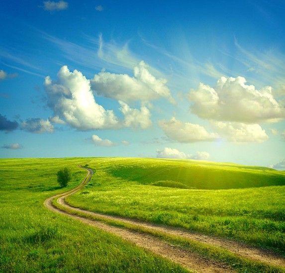 Spring Meadow Summer Wallpaper Landscape Landscape Wallpaper