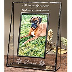 Personalized Pets Memory Series Glass Photo Frame Forever In Our