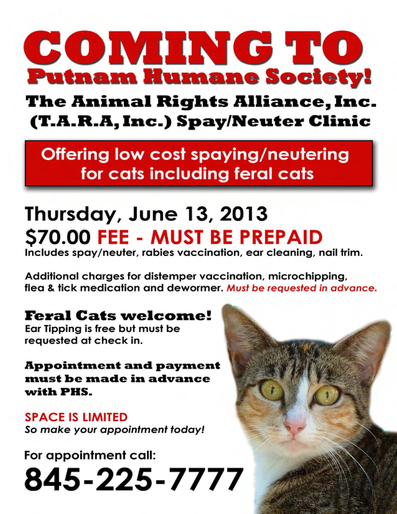 Putnam Humane Society Low Cost Spay Neuter Clinic Thursday June 13 2013 Feral Cats Welcome Space Is Clinic Feral Cats Tick Treatment