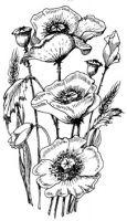 Http Www Art Kure Com With Images Poppy Art Art Poppies