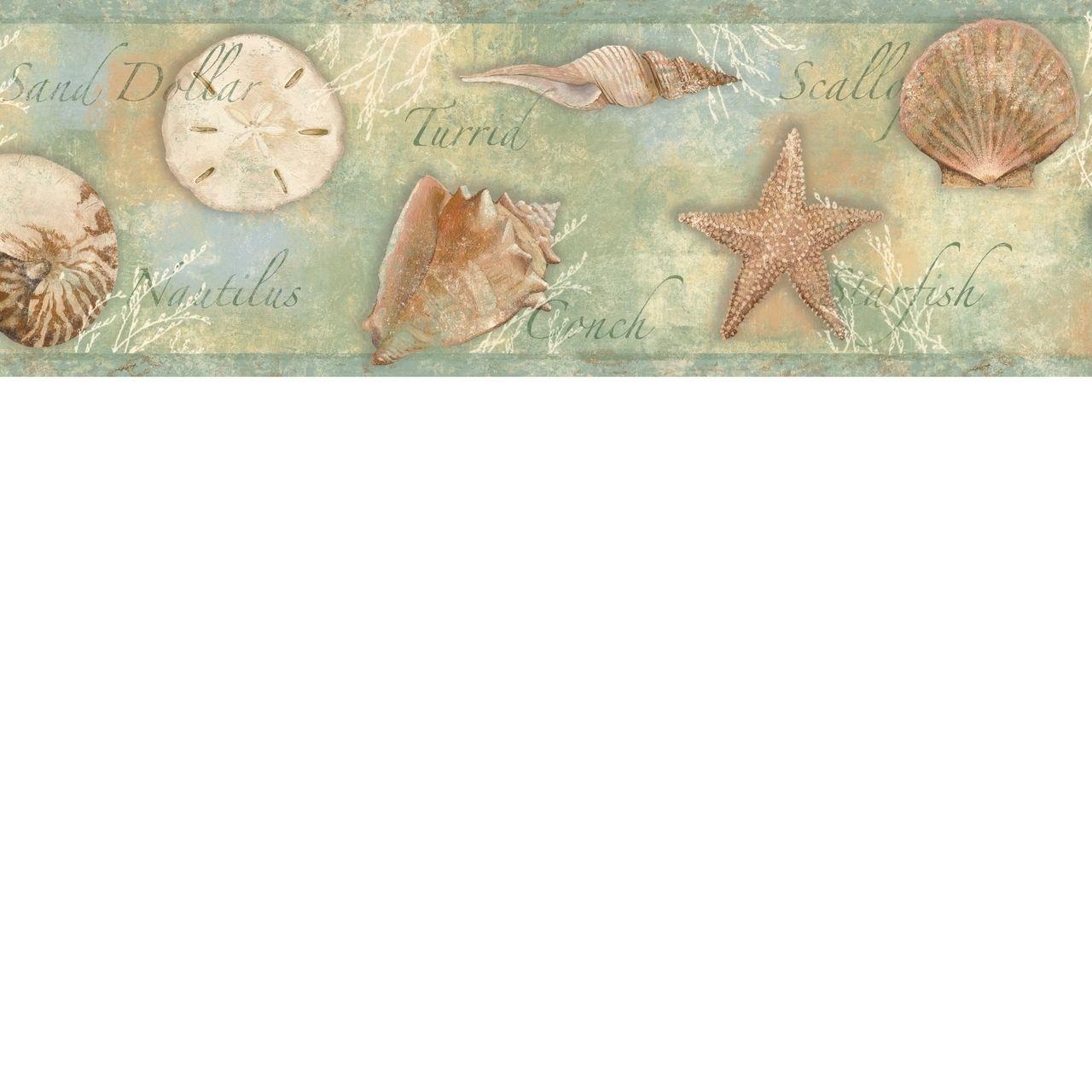 Seashells wallpaper 24 - Borders By Chesapeake Seashells Wallpaper Border Bbc46052b