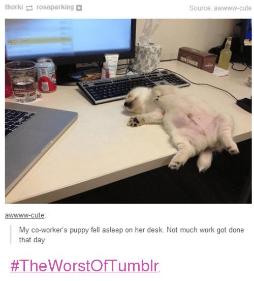 Funny Memes About Work Tumblr : Funny work memes tumblr pinterest