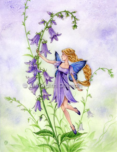 Fairy Creeping Bellflower By MeredithDillman On DeviantART