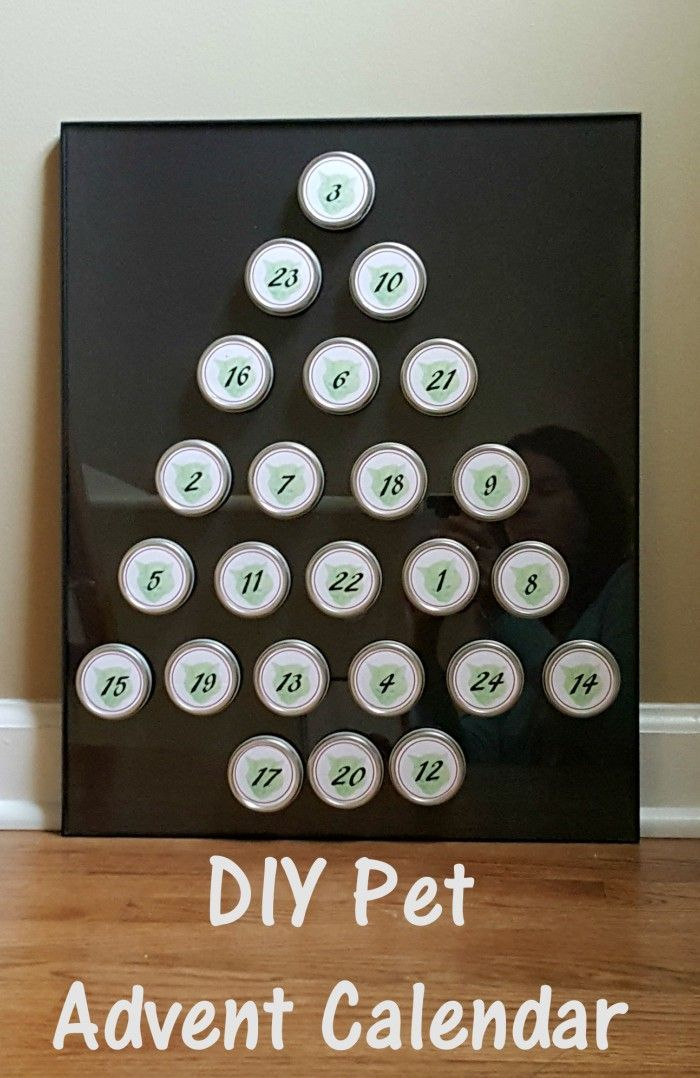 DIY Pet Advent Calendar - Free Printable and Tutorial to Create Your