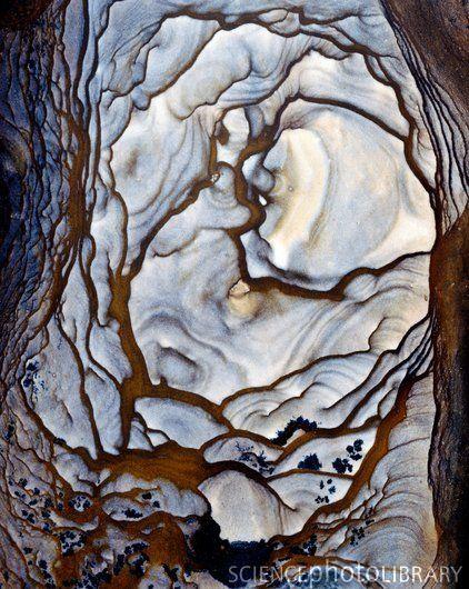 Blue Biggs Jasper stone