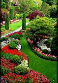 All The Beauty Thing Outdoor Gardens, Outdoor Garden Decor, Back Gardens,  Landscape Curbing