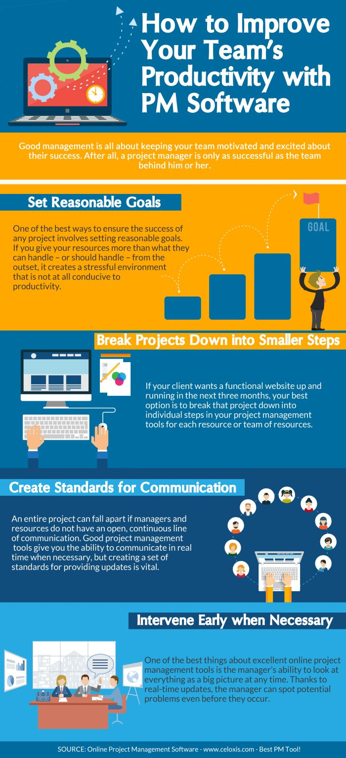 Software Project Management Men Wallet Productivity Infographic