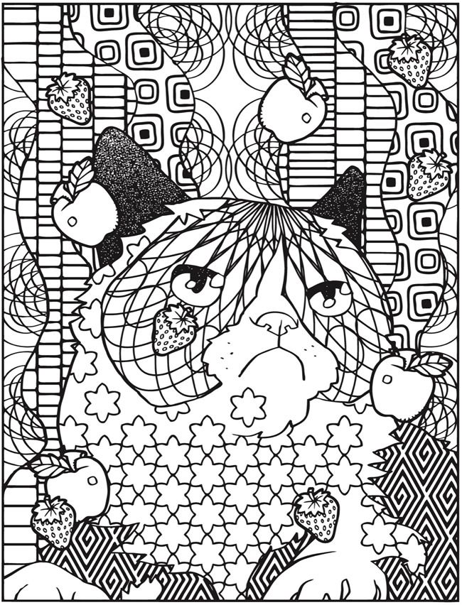 Dover Publications Creative Haven Grumpy Cat Hates Coloring Book More