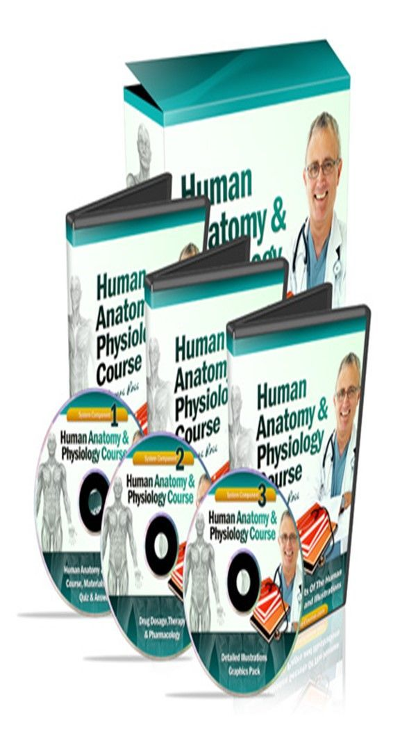 Are you looking to learn anatomy and physiology? Get the edge, learn ...