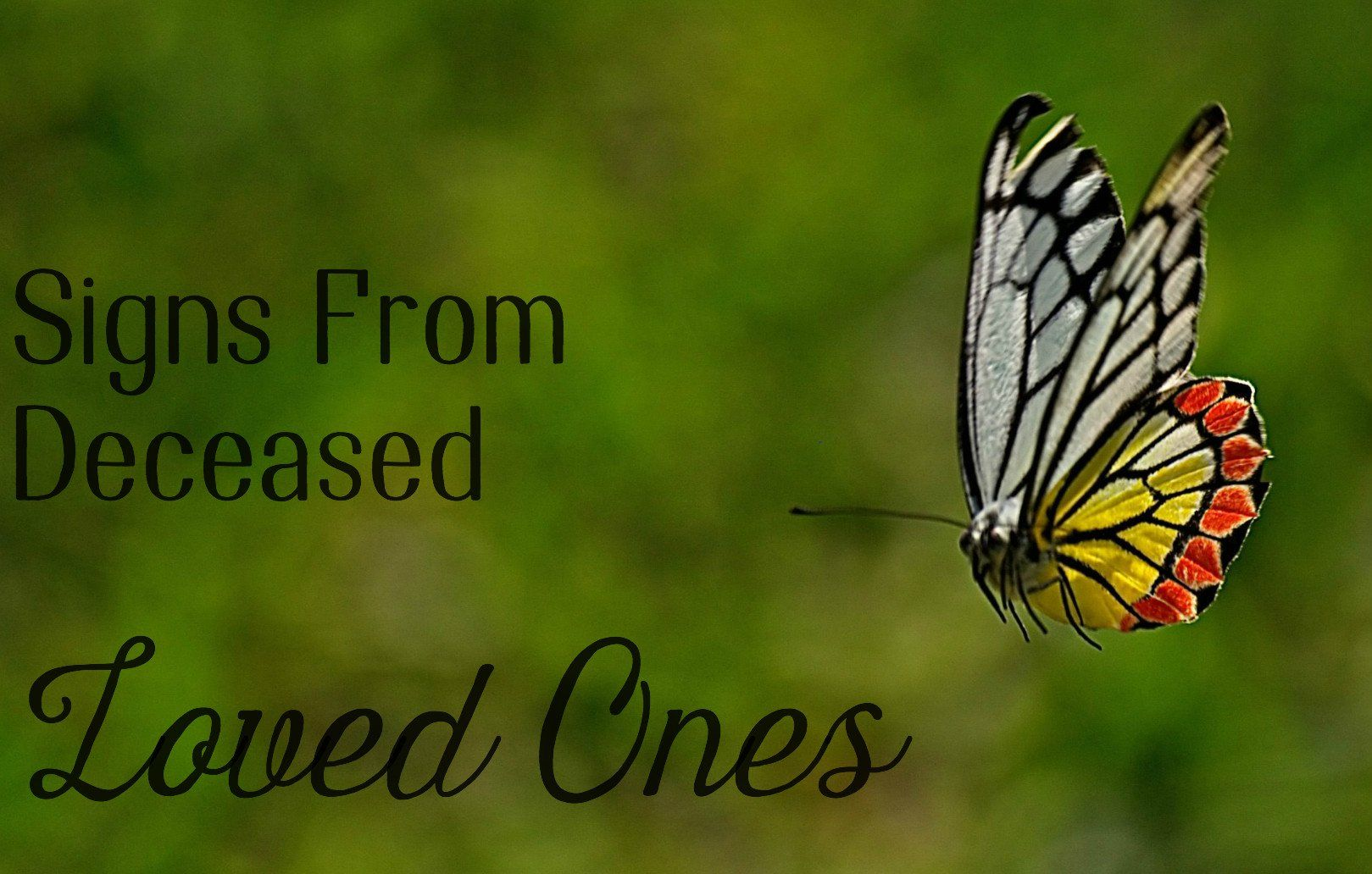 Signs from Deceased Loved Ones | Signs from heaven, First