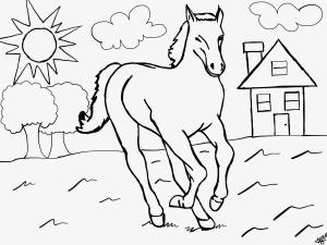 pferdebild zum ausmalen mit bildern | ausmalbilder pferde, ausmalen, ausmalbilder