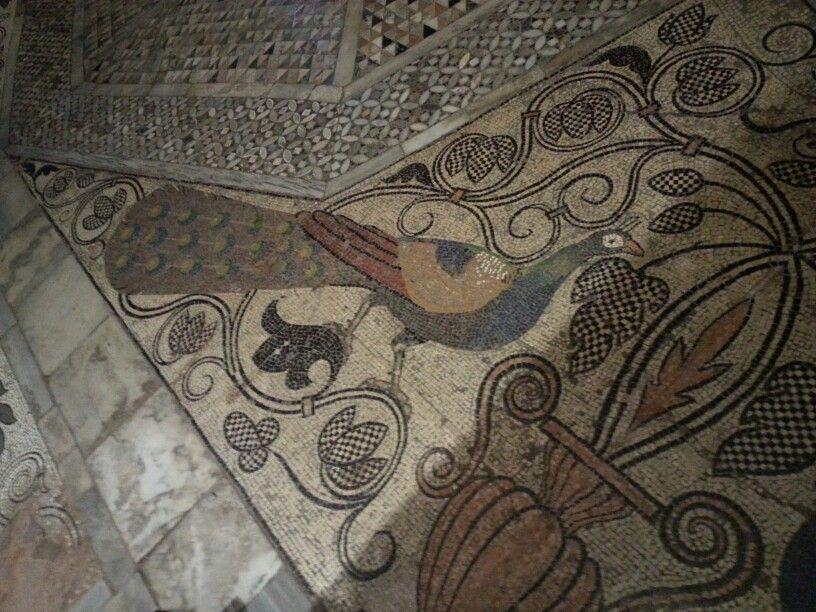 Basílica de San Marcos. Mosaico del suelo.   Viajes y lugares que ...