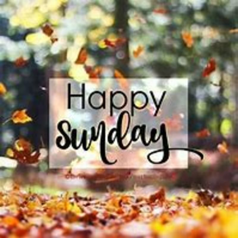 Sunday Pics Images Good Morning For Whatsapp 278208 Sunday Pictures Sunday Images Happy Sunday Images