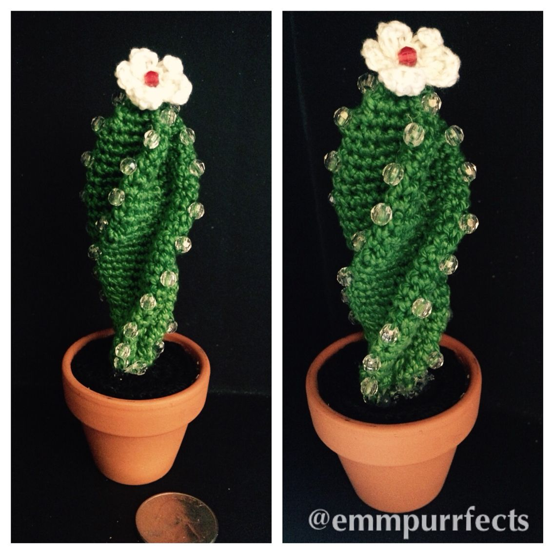 Gli ultimi cactus dell'estate (com imagens) | Cacto de crochê ... | 1136x1136