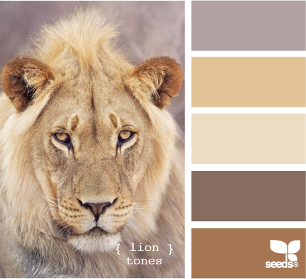 lion tones color palette inspiration by seeds