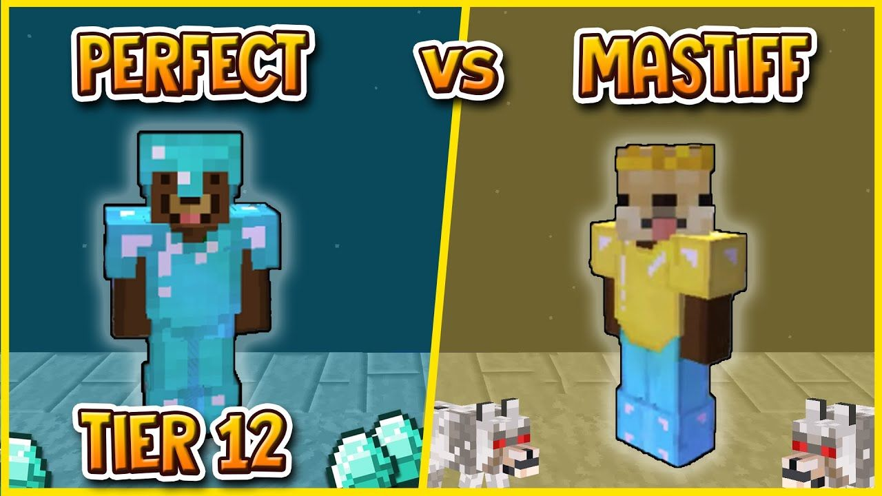 Hypixel Skyblock Tier 12 Perfect Vs Mastiff Armor Crazy Results Mastiffs Armor Perfection