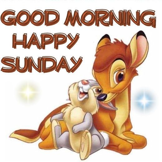 Good Morning Happy Sunday Greet The Day