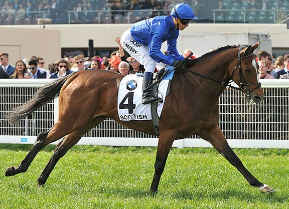 Another Euro horse with designs on the G1 Emirates S., is Godolphin's 4-year-old Scottish (Ire) (Teofilo {Ire}). The Charlie Appleby-trained gelding ran a fine race to be second to Jameka (Aus) (Myboycharlie {Ire}) in the …