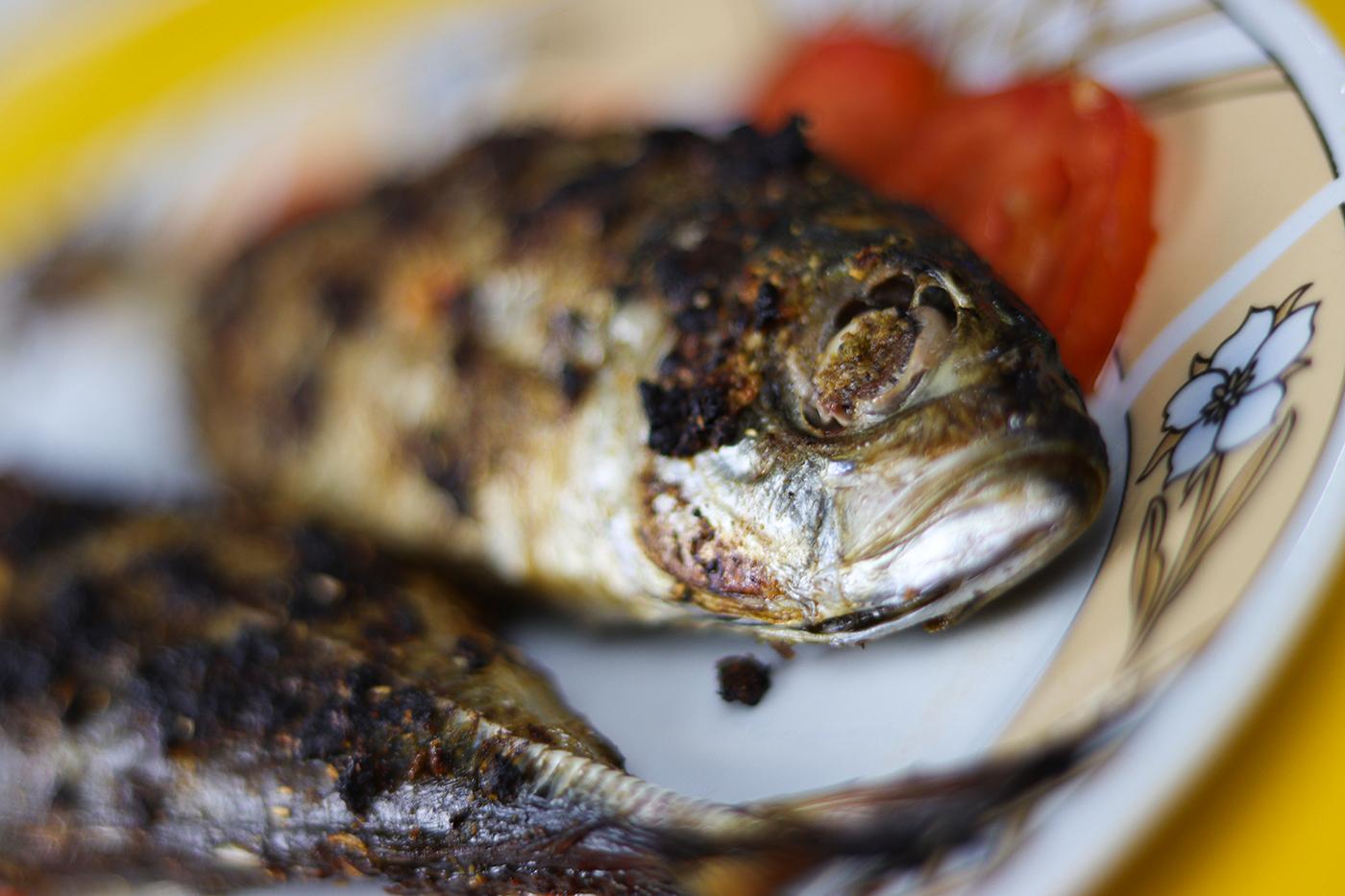 سمك مشوي بالفرن وجبات سريعة خفيفة لطيفة Cooking Recipes Cooking Recipes