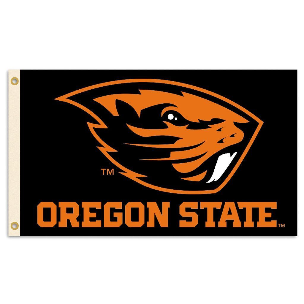 4x6 ft OREGON The Beaver State OFFICIAL FLAG 2 SIDED FLAG OUTDOOR NYLON USA MADE