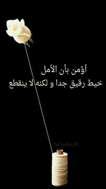 اقوال و حكم عن الحياة Words Arabic Words Mimi
