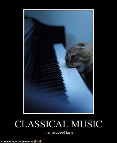 Classical Music An Acquired Taste Classical Music Music Memes Music Humor