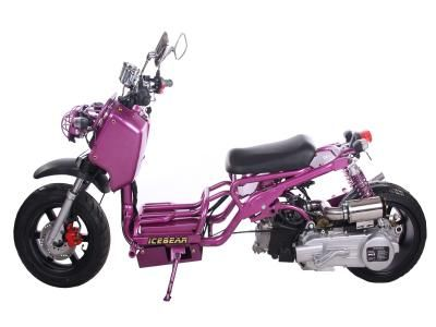 Maddog 150 150cc Scooter Free fully assembled available! IceBear ...
