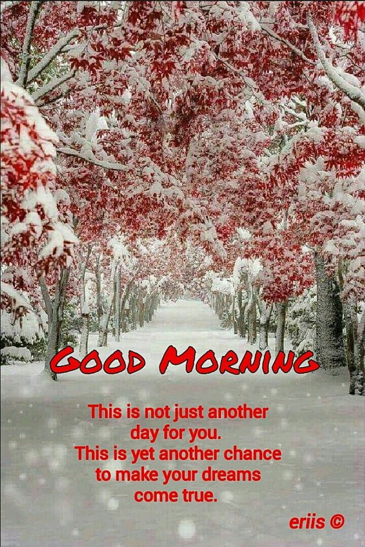 Good Morning Good Morning Quotes Good Morning Beautiful Quotes Good Morning Winter