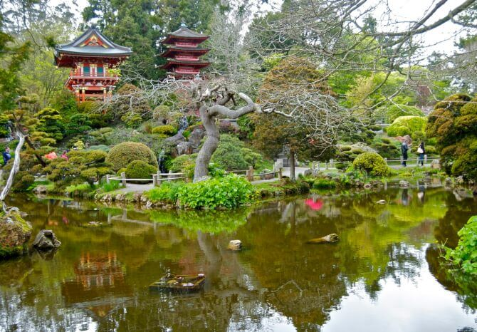 Things To Do In Tea Gardens
