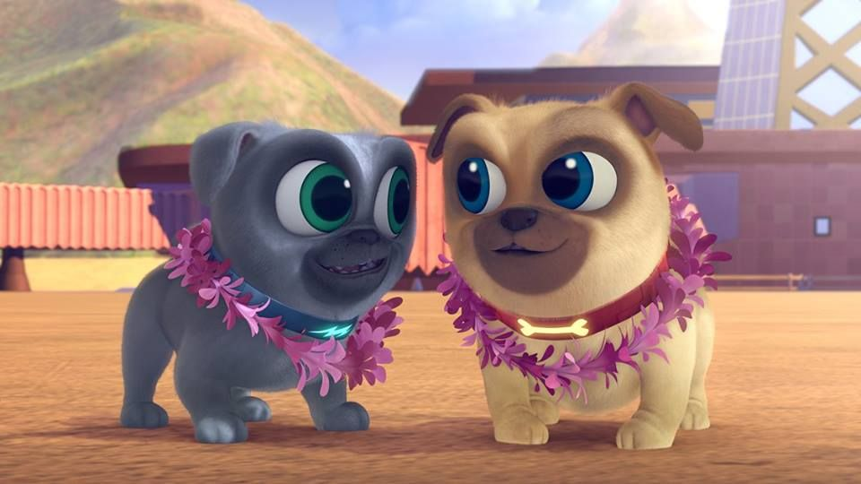 Puppy Dog Pals Cute New Disney Junior Show Disney Junior Dogs And Puppies Young Animal