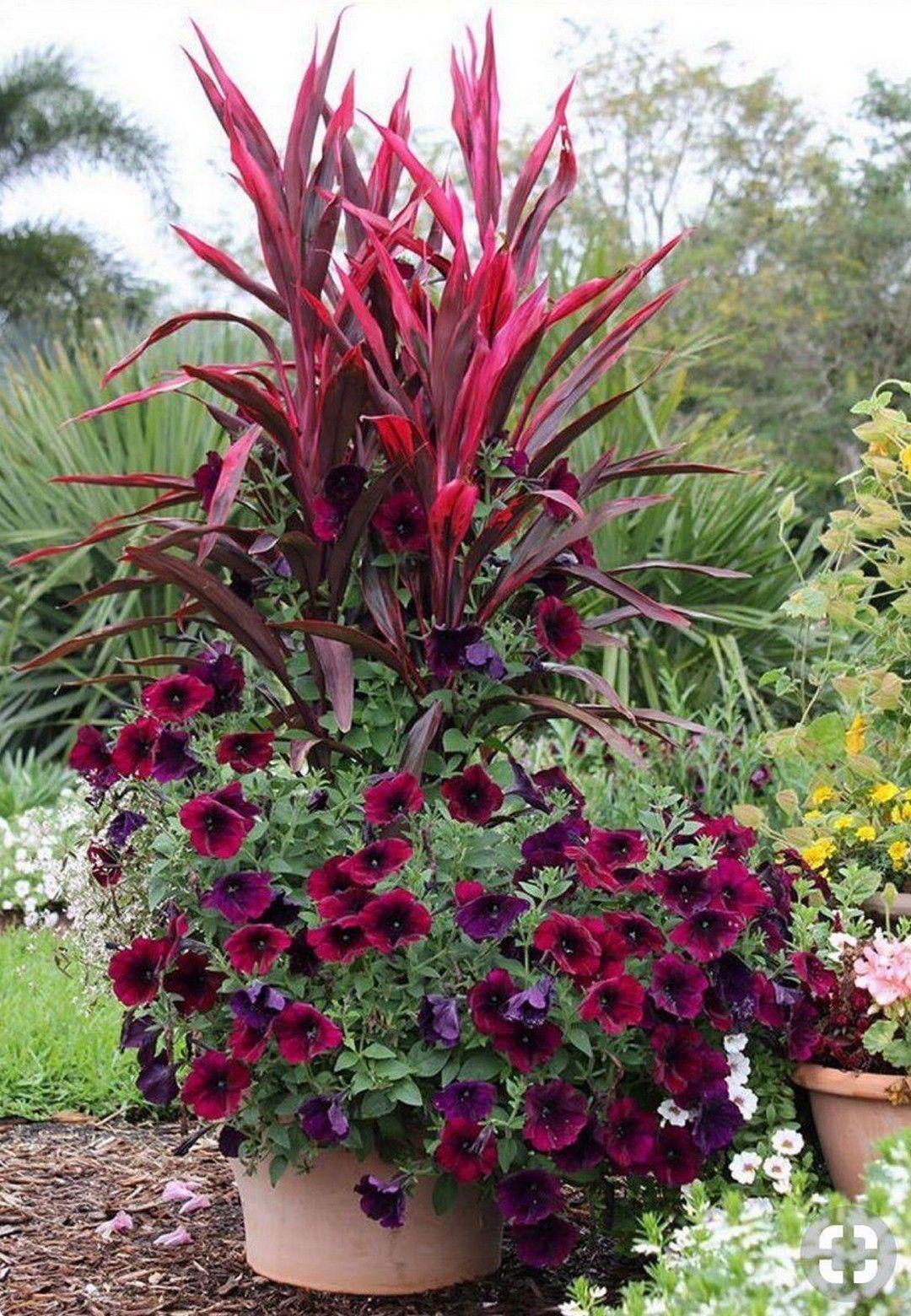 #beautiful #container #gardening #ideas #pots #diy #and28 Beautiful DIY Pots And Container Gardening Ideas #shadecontainergardenideas