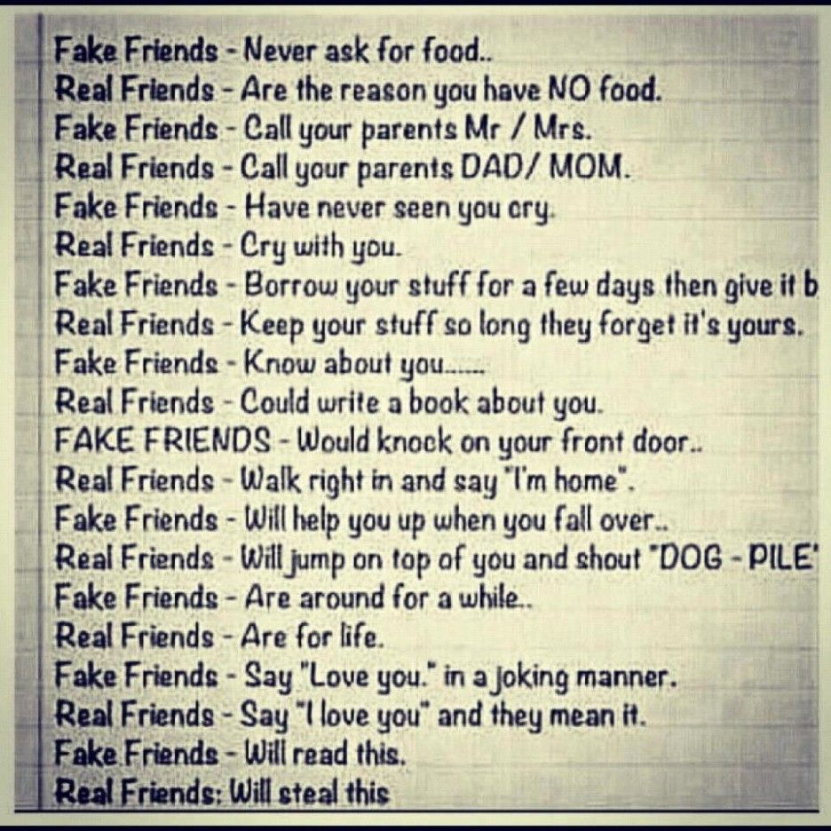 friendship jokes quotes
