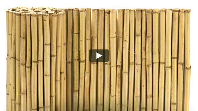 1 In Natural 6ft X 6ft Rolled Bamboo Fencing Bambu