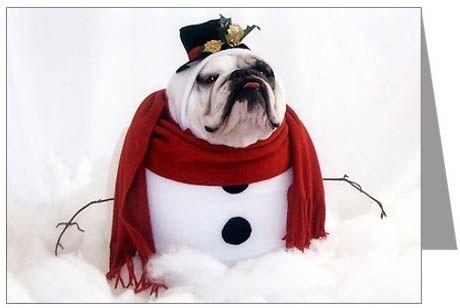 Google Image Result for http://www.bulldog.dogbreed-gifts.com/christmas/bulldog-christmas-cards3.jpg