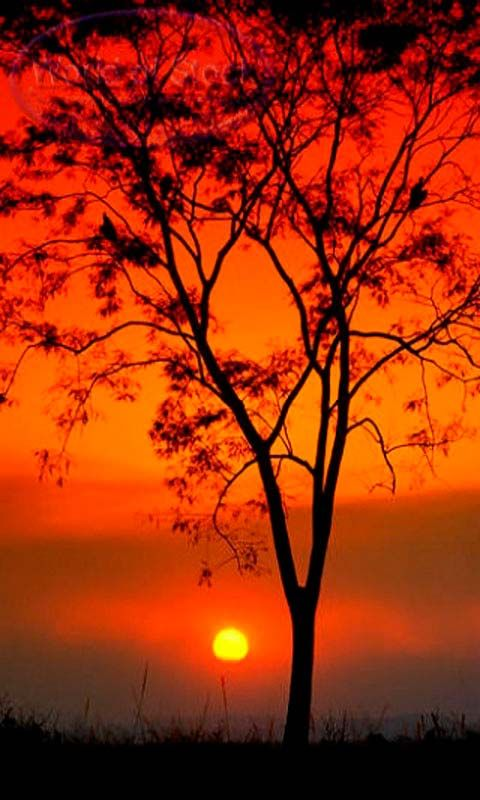 Beautiful Sunset Red Sky Android Wallpapers Htc T Mobile G2 G1 Wallpapers Free Download Beautiful Sunset Beautiful Sunrise Sky Landscape