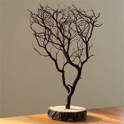 Natural Manzanita Centerpieces Tree Branch Crafts Manzanita Branches Manzanita Centerpiece