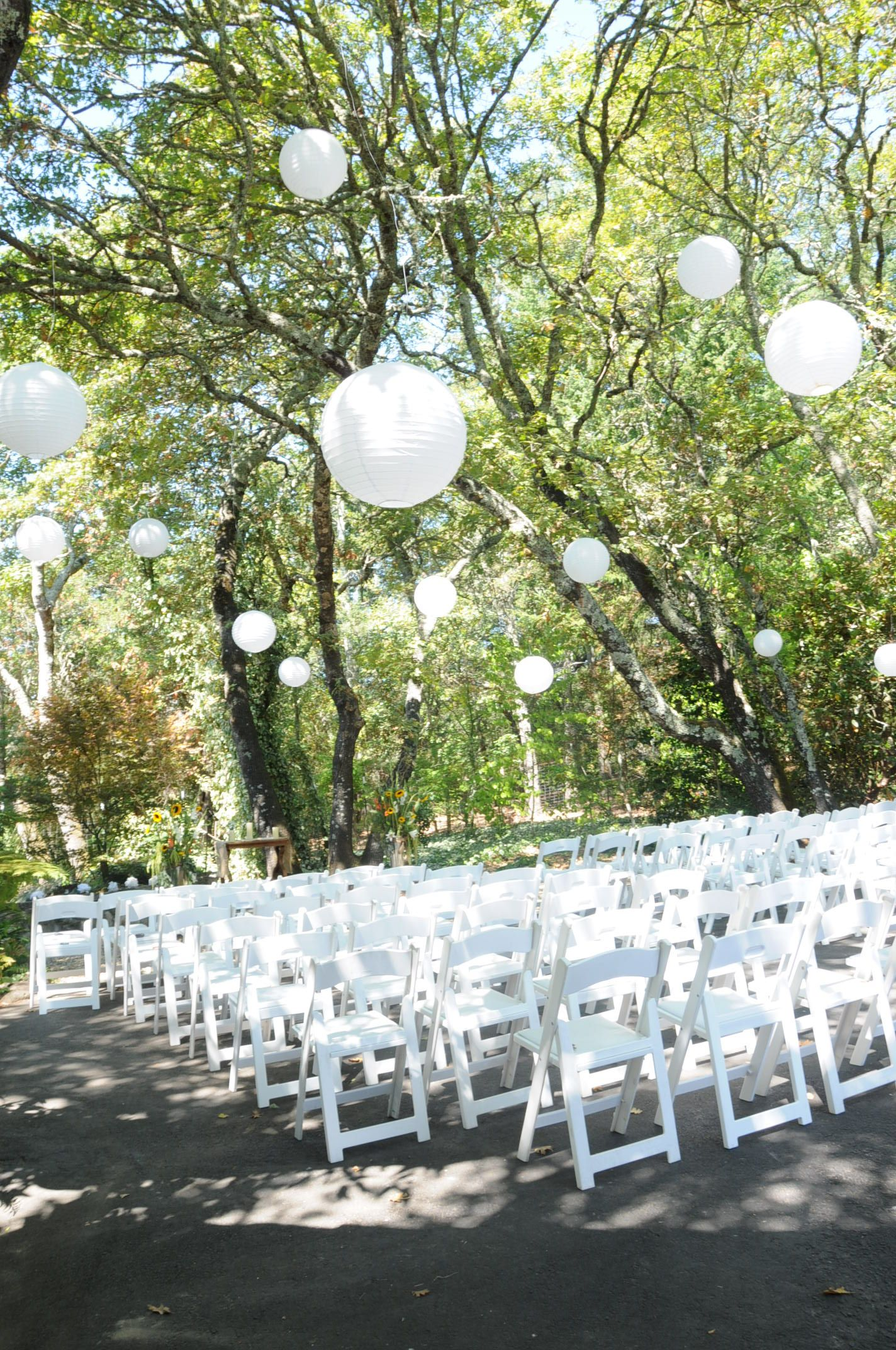 White paper lanterns hanging from trees during