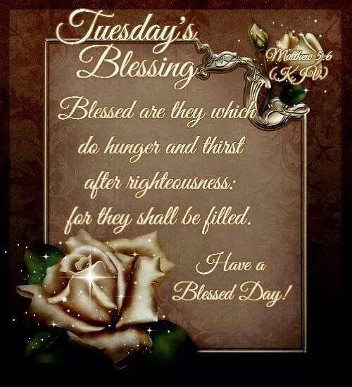 Tuesday Blessings | Blessed quotes, Good morning tuesday