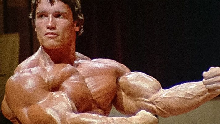 Arnold schwarzenegger blueprint trainer day 30 pinterest arnold arnold schwarzenegger blueprint trainer day 30 malvernweather Image collections
