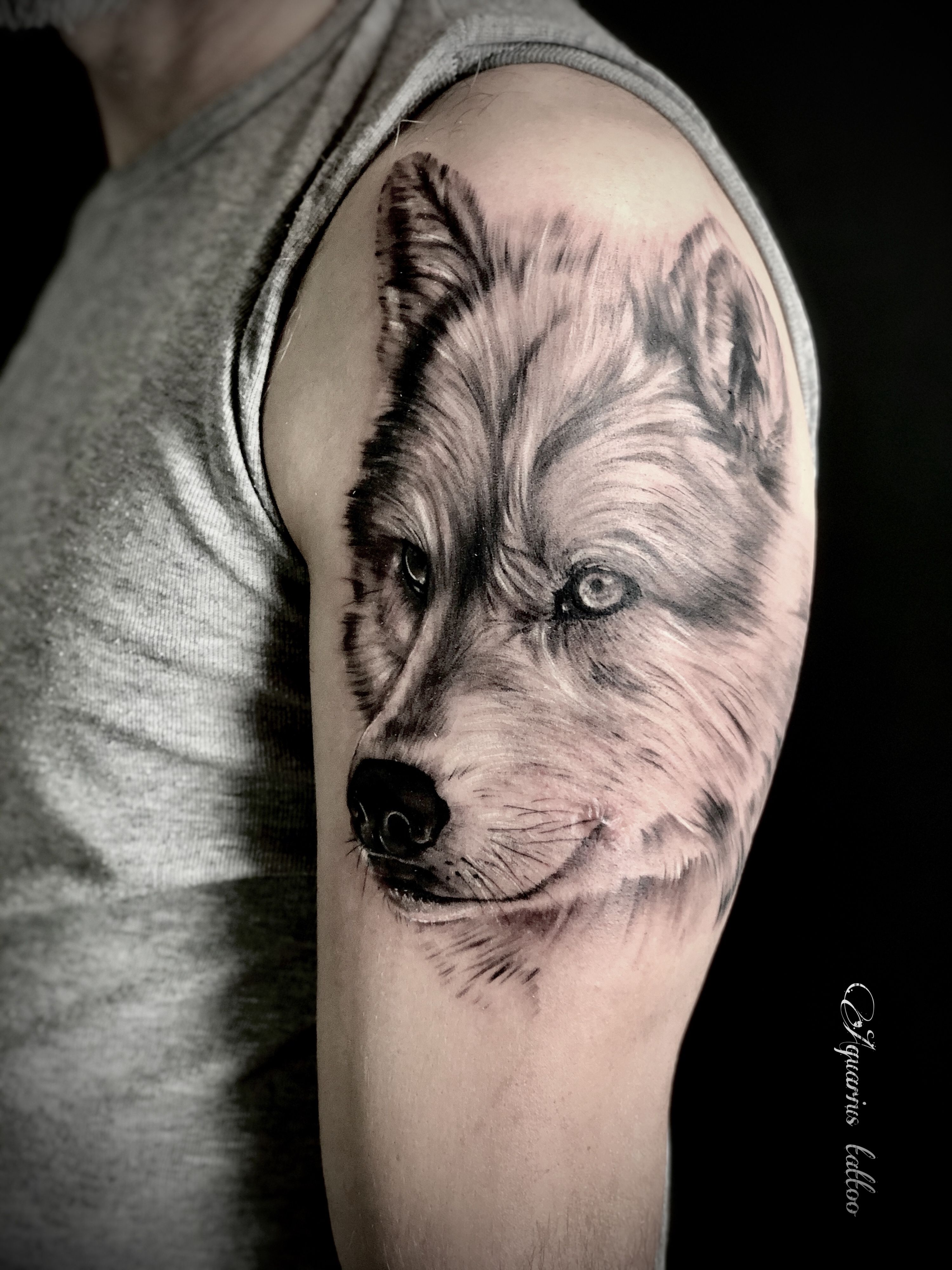 Wolf Tattoo Aquarius Tattoo Wolf Tattoo Tattoos