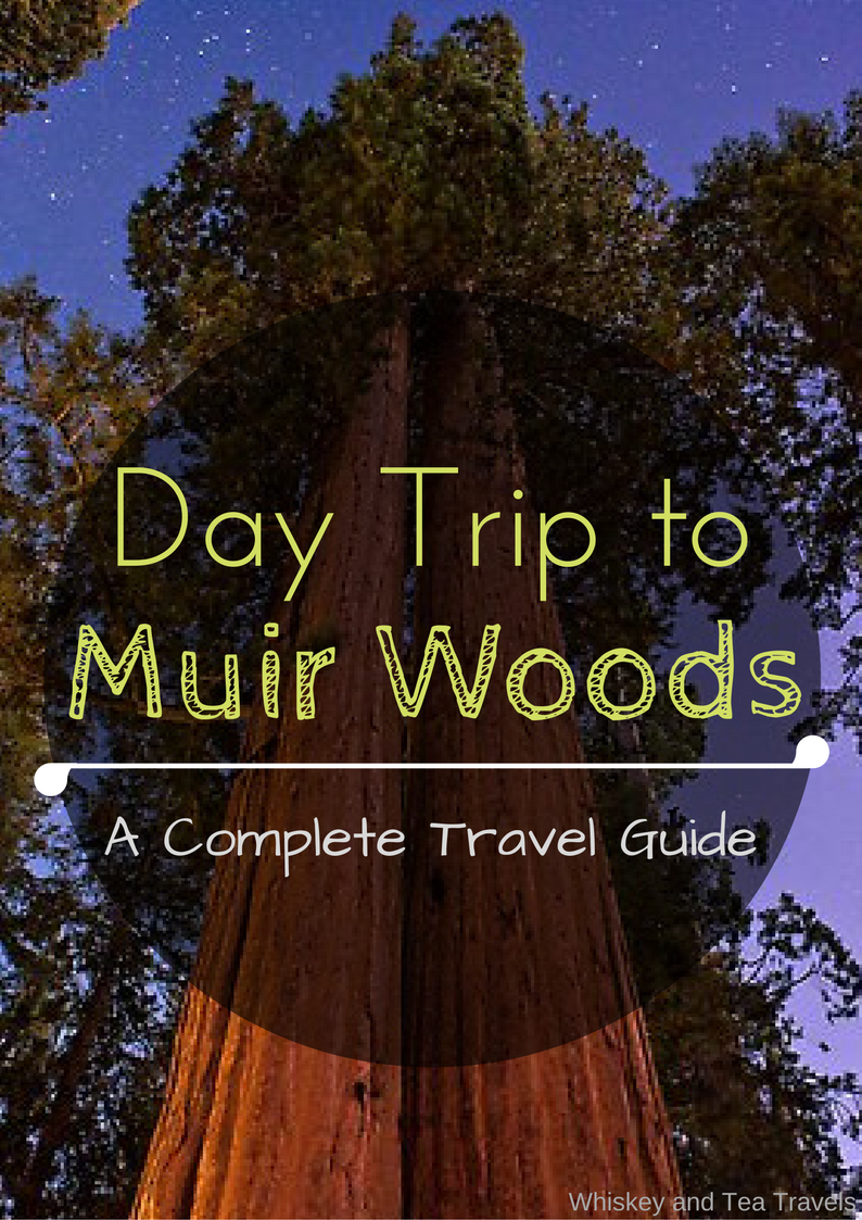 San Francisco Map Attractions Pdf%0A Muir Woods Travel Guide  Day Trip from San Fransisco