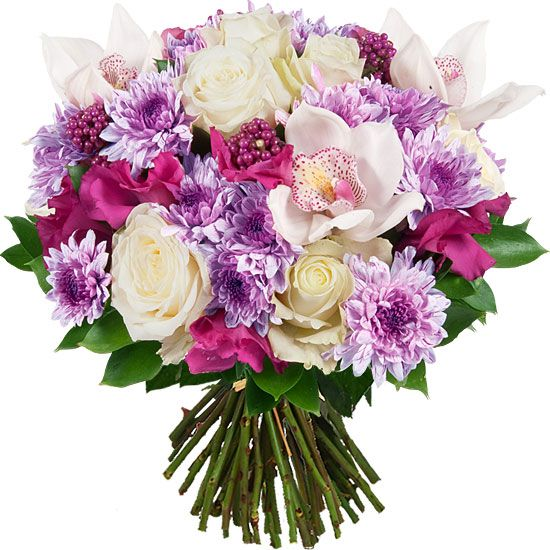 Bouquet De Roses Rouge Velours Par Aquarelle Com Bouquet De