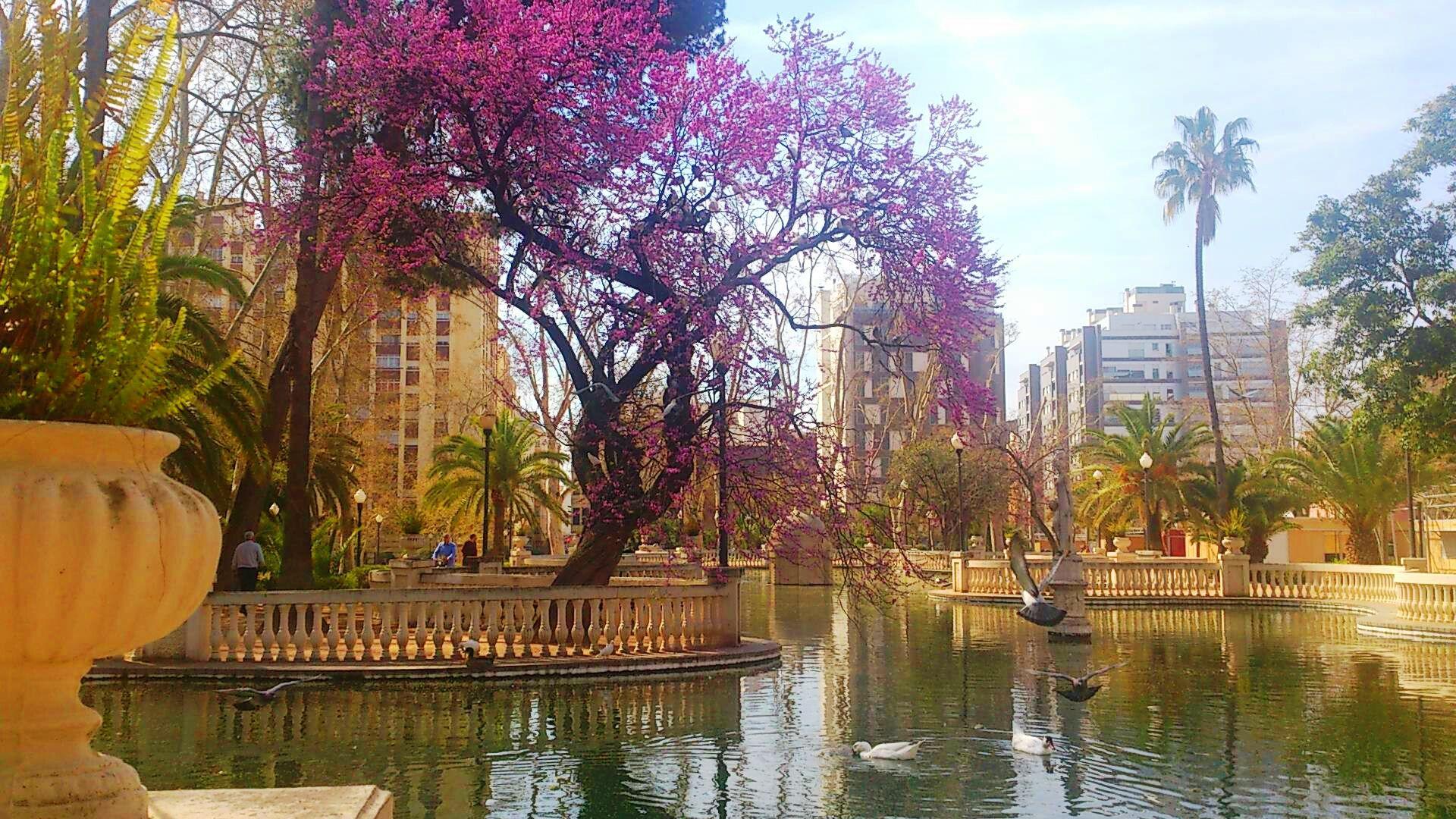 Estanque del Parque de Ribalta, en Castellón