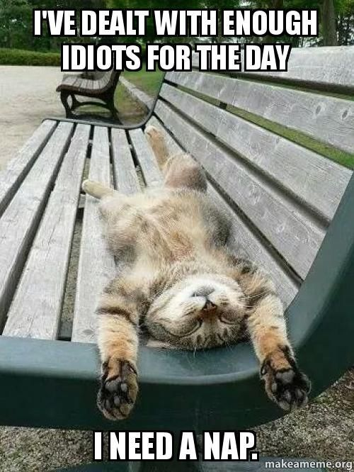 Soo True today. #Funny #nap