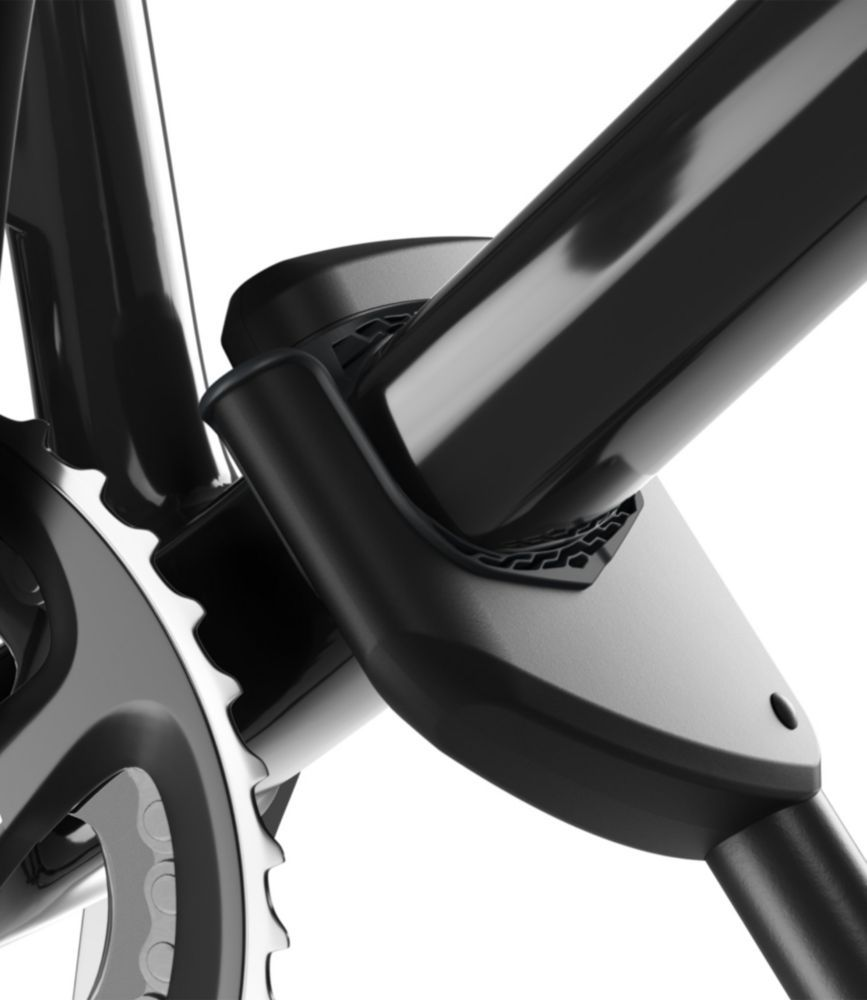 Thule 598004 ProRide XT Bike Carrier Cool bike