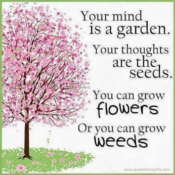 Grow flowers!