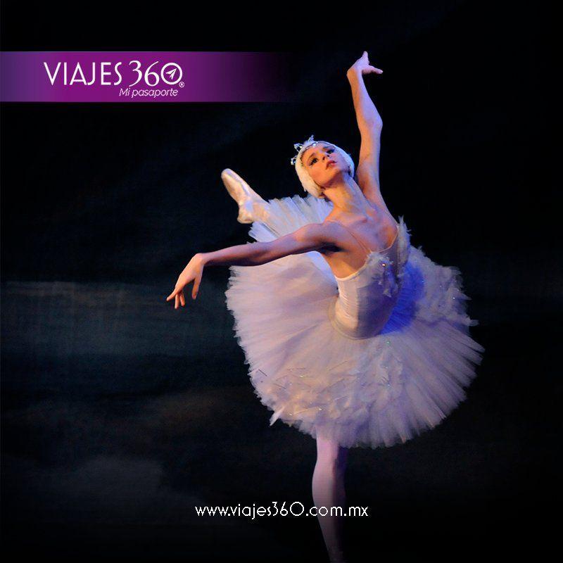 VIAJES 360 (@VIAJES360mx)   Twitter