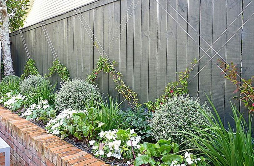 Awesome Fence With Evergreen Plants Landscaping Ideas 27 400 x 300