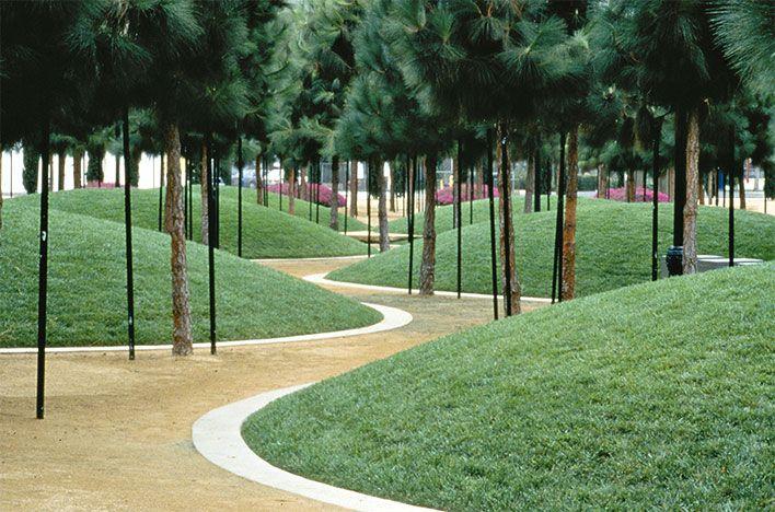 Martha Shwartz 1950 Landscape Architecture Design Landscape Design Park Landscape