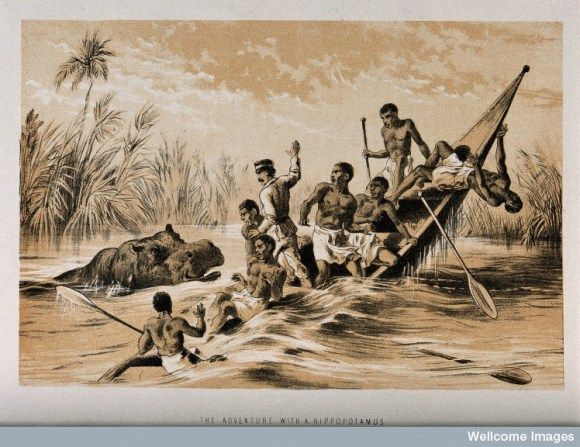 David Livingstone and his followers on a boat, attacked by a - doctor livingstone i presume